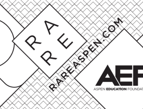 RARE Aspen is  helping to raise funds for AEF